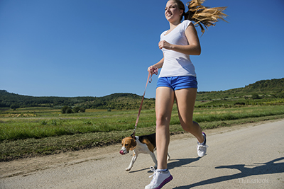 exercise is best for pets