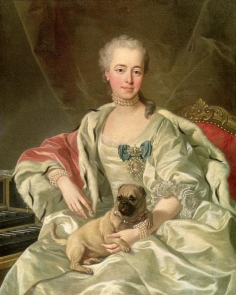 history of pug dog breed