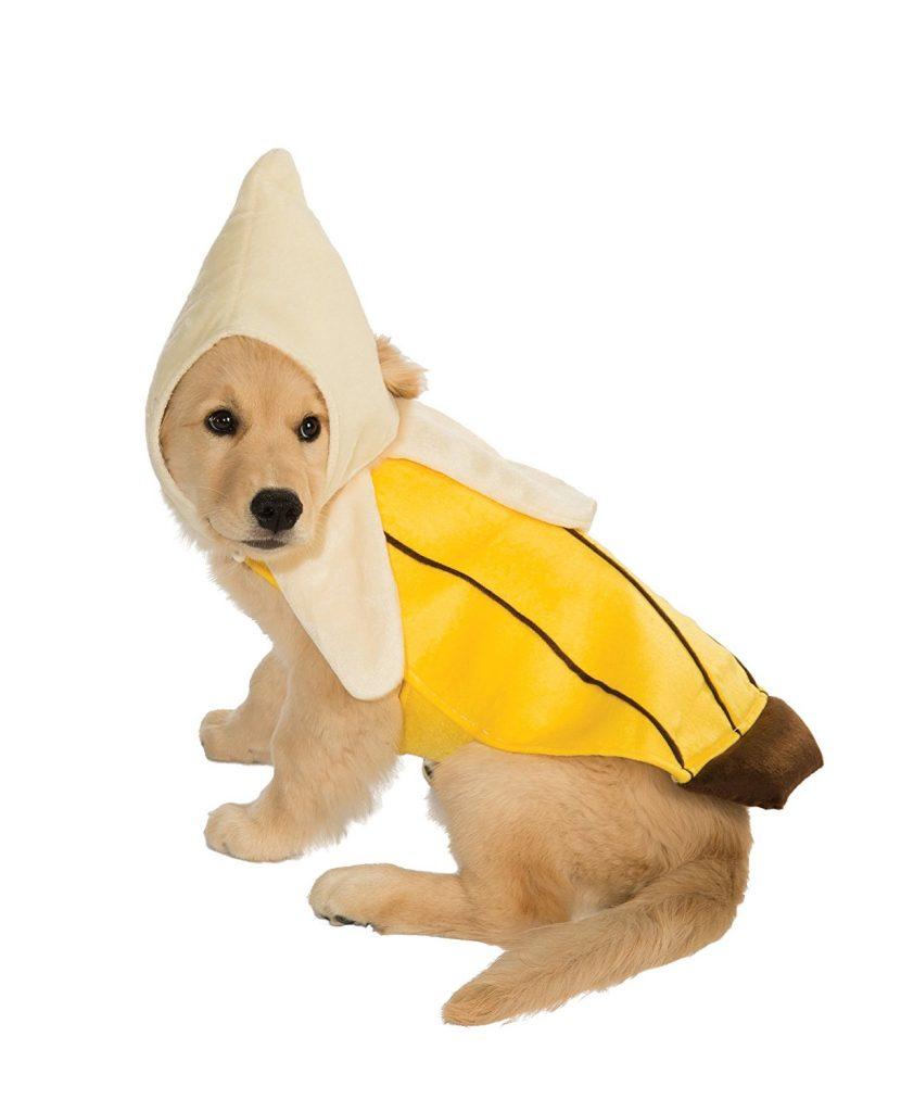 Banana Dog Costume