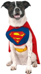 Superman Dog Costume dogmal