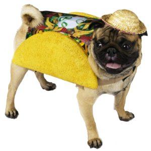 dog-taco-costume