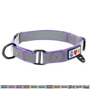 Pawtitas-Reflective-Dog-Collar-Martingale-Dog-Collar