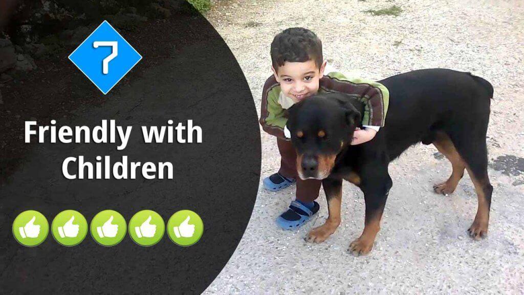 7-Friendly with Children